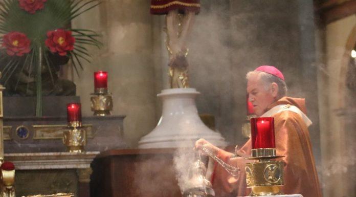Arzobispo Pedro Vázquez Villalobos