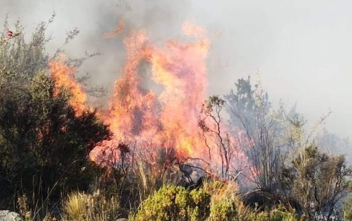 Incendio en San Bartolomé Ayautla, helicóptero de apoyo llega y se va pagina 3