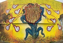 Celebran el día internacional de los pueblos indígenas con arte urbano indígena pagina 3