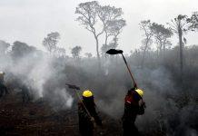 Bolivia, el rostro escondido del infierno de la Amazonia pagina 3