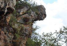 el cerro del jaguar en santa catarina lachatao pagina 3