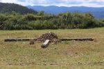 sitio de ritual santa catarina lachatao pagina 3
