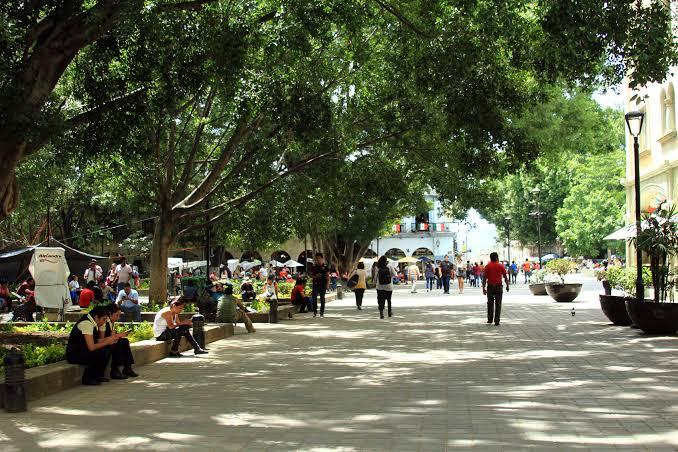 Oaxaca es de las entidades con más municipios en rezago social y económico: Citibanamex pagina 3