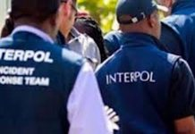 Elementos de la Interpol