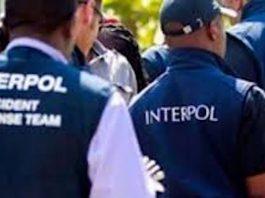 Elementos de la Interpol