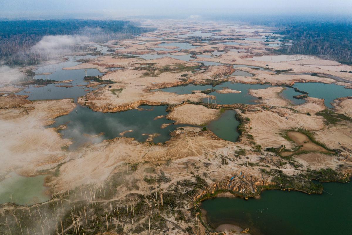 devastación de los ecosistemas