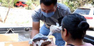 Políticos de la 4T hacen campaña en tiempos de pandemia por el coronavirus.